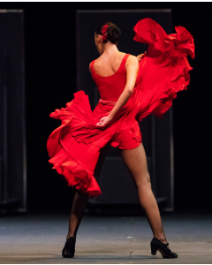 Compañía Antonio Gades - Carmen